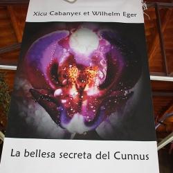 La bellesa secreta del cunnus [6]